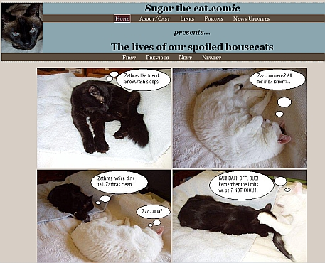 Sugar the cat.com website snapshot